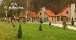 green-village8